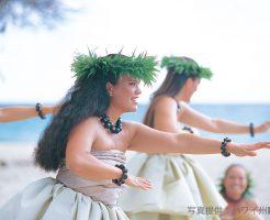 ハワイアンカルチャーを学ぶプラン