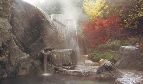 臥龍温泉 ひまわり 庭園露天風呂