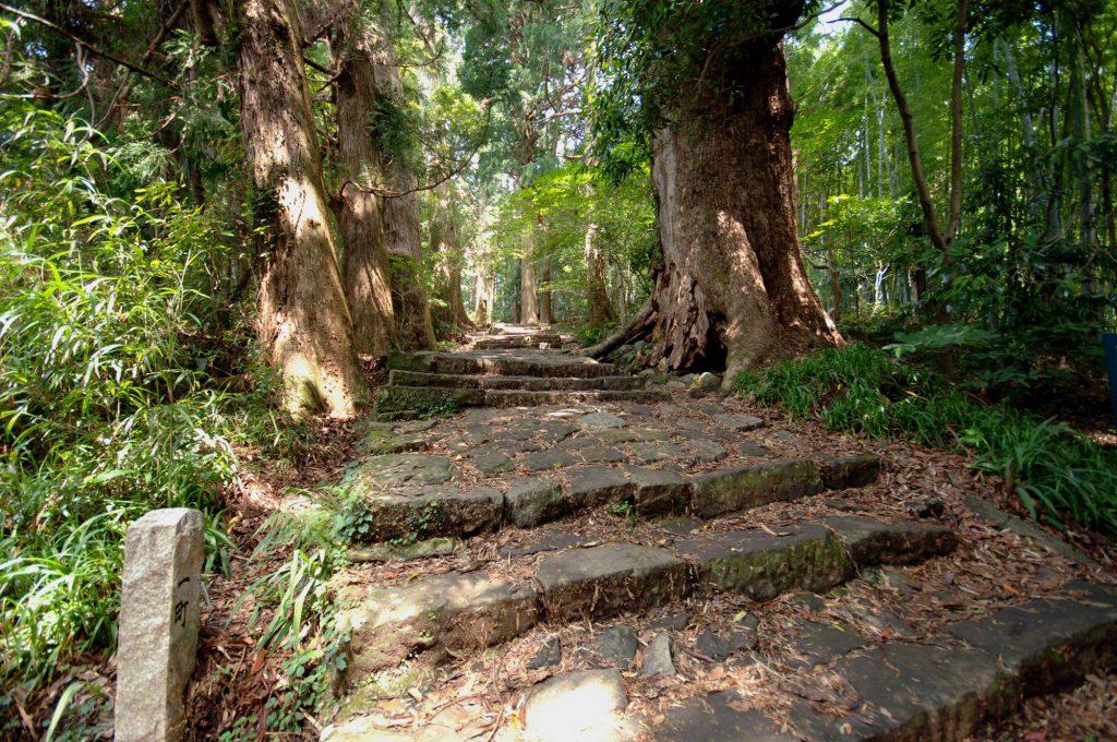 紀伊山地の霊場と参詣道の画像 p1_24
