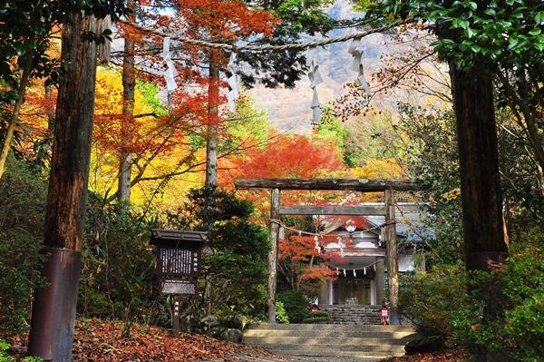 箱根仙石原・金時神社