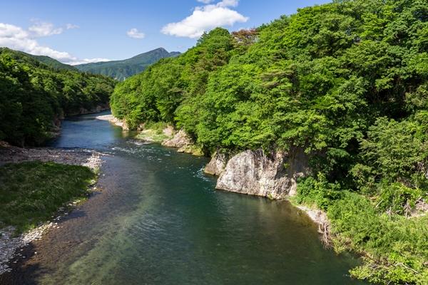 鬼怒川の新緑の渓谷