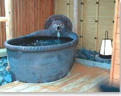 かわいいたぬきの露天風呂