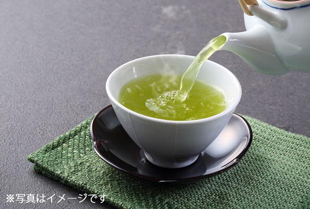 佐賀県のお茶イメージ