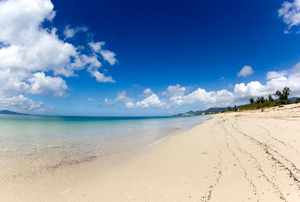 団体旅行で行き先人気の沖縄県