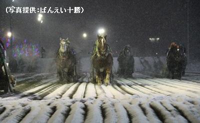 北海道・十勝にしかないばんえい競馬場