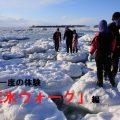 一生に一度の体験「流氷ウォーク」