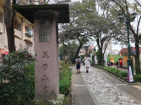 写真:撮影Mさん(宝塚駅から大劇場までの「花の道」)