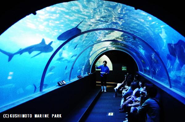 串本海中公園センターの「水族館」