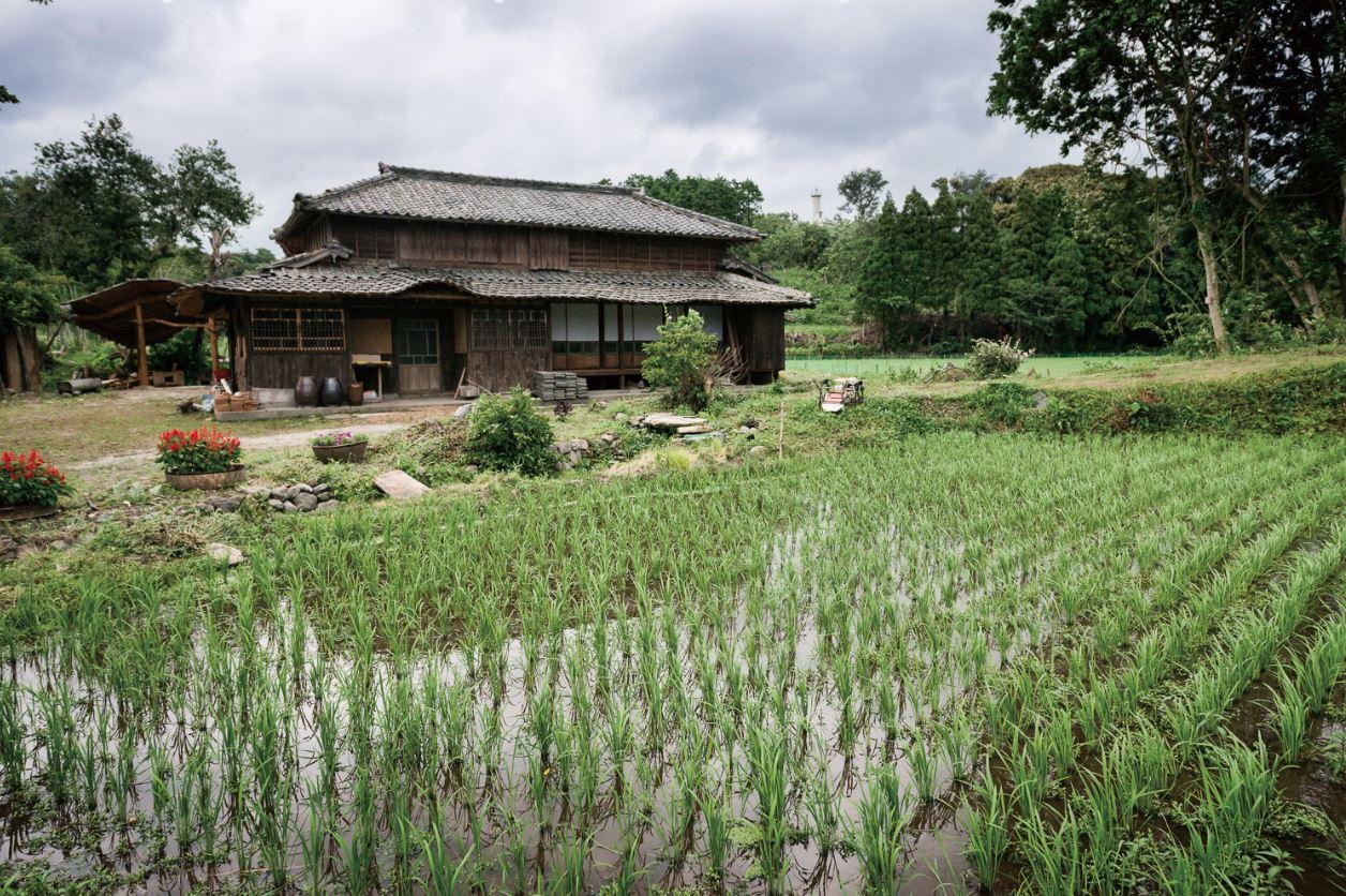 合鴨農法でお米を栽培