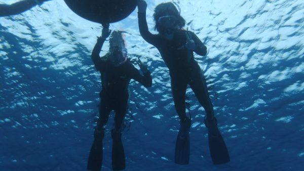 バリアフリーなダイビング体験