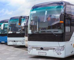 4月におすすめのバス旅行プラン