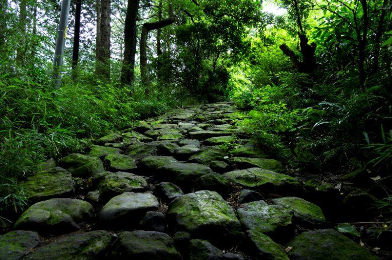 箱根旧街道・石畳の道