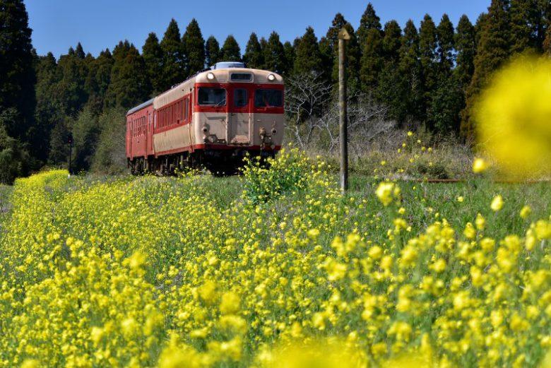 いすみ鉄道貸切プラン