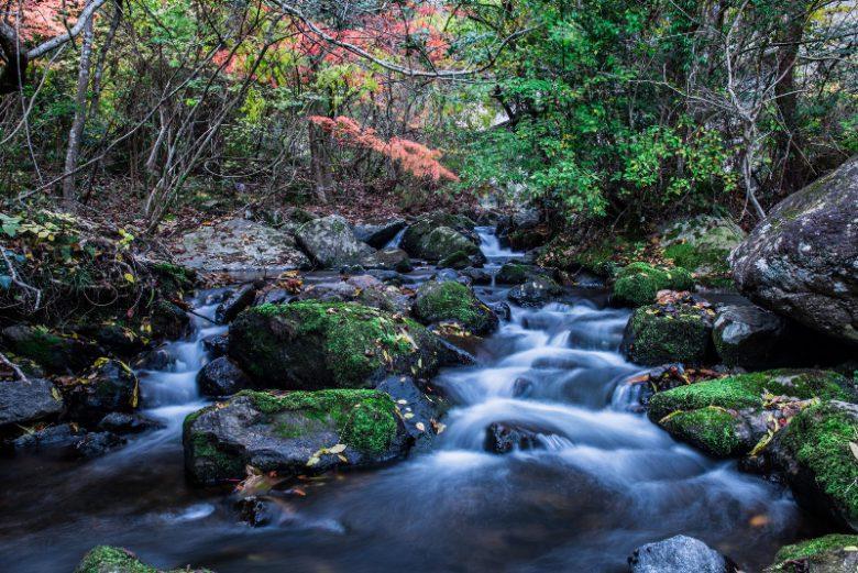 渓谷美が美しいるり渓