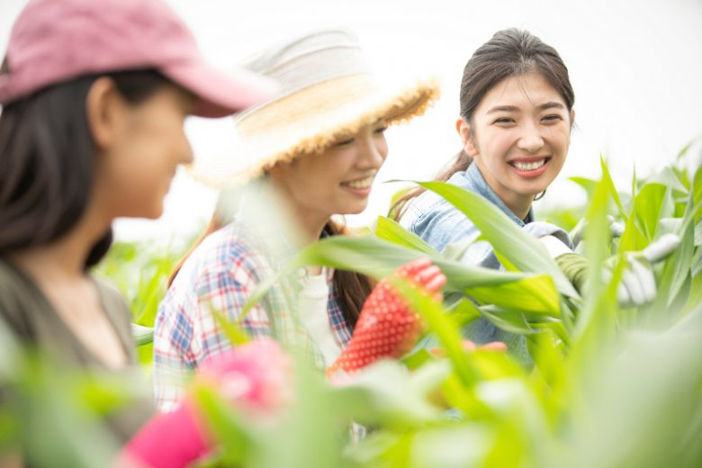 収穫体験イベント
