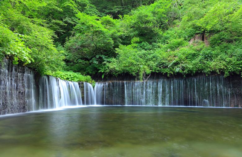 富士宮市の白糸の滝は世界遺産の一部
