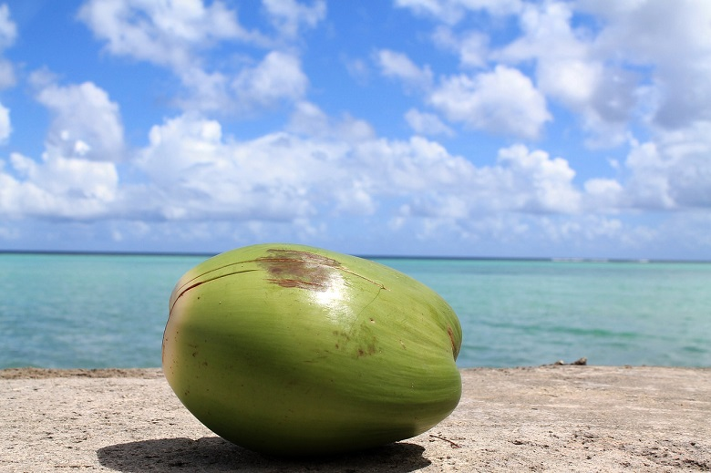乾季のラストチャンス・グアムの5月