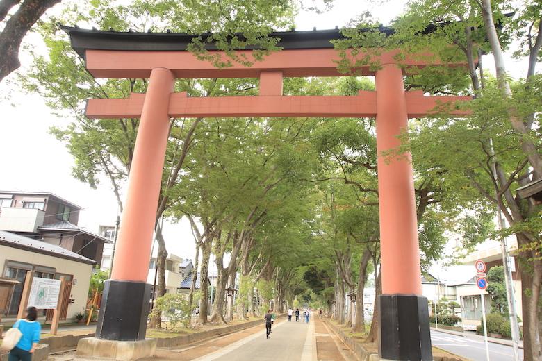 パワースポット・氷川神社の参道