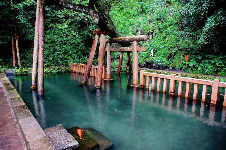 鹿島神宮の御手洗の池