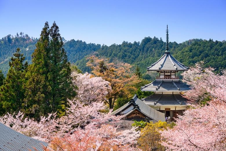 世界遺産・ 金峯山寺(きんぷせんじ)