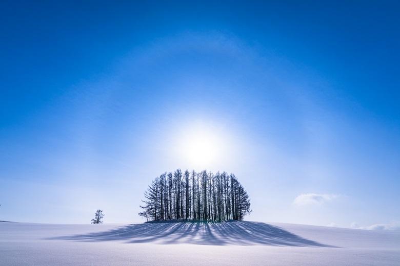 北海道・冬のマイルドセブンの丘・美しい幻日環