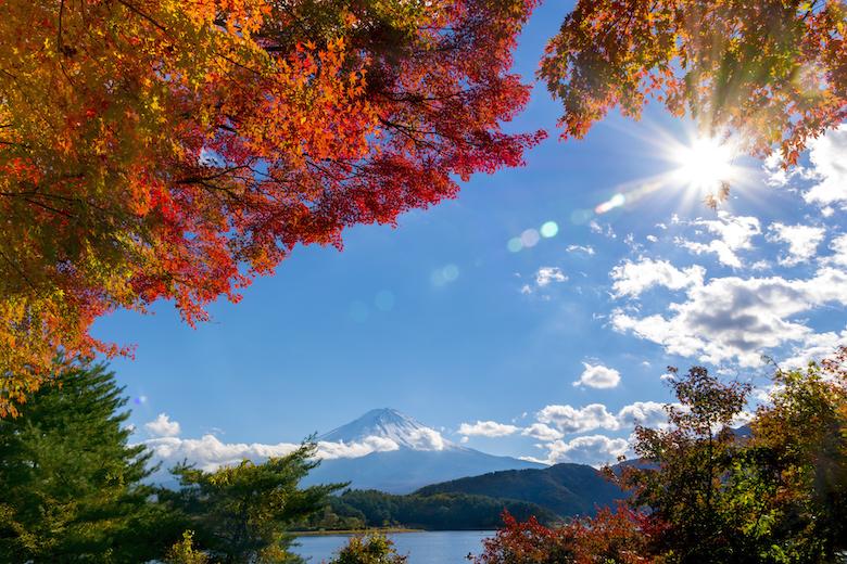 10月関西出発で楽しむ日帰りバスツアー