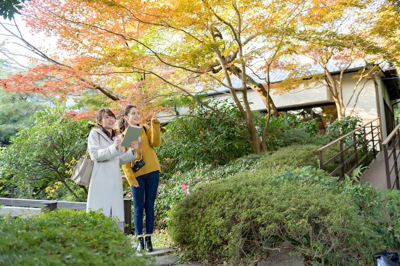 11月関東出発の日帰りバスツアープラン
