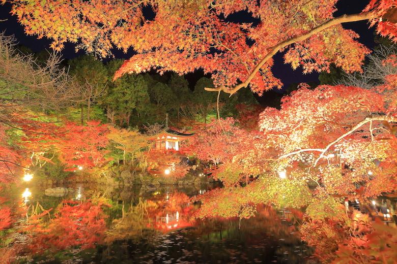 醍醐寺 夜間拝観の紅葉