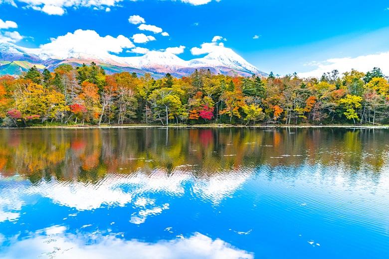 知床五湖の紅葉