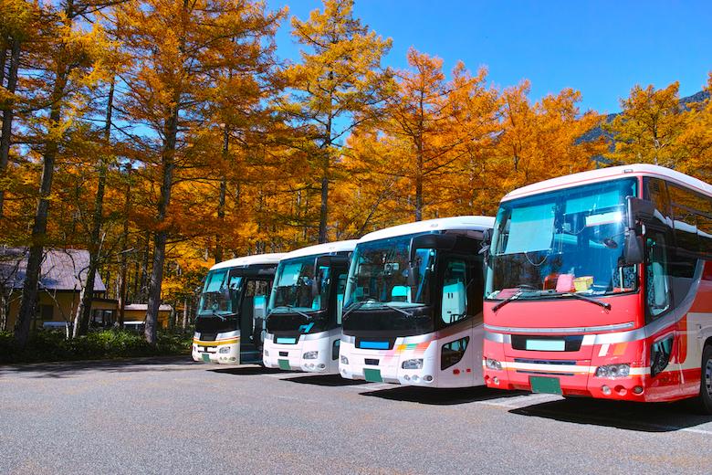 関東エリア出発11月におすすめの日帰りバス旅行プランまとめ