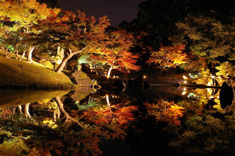 彦根城 玄宮園 ライトアップ