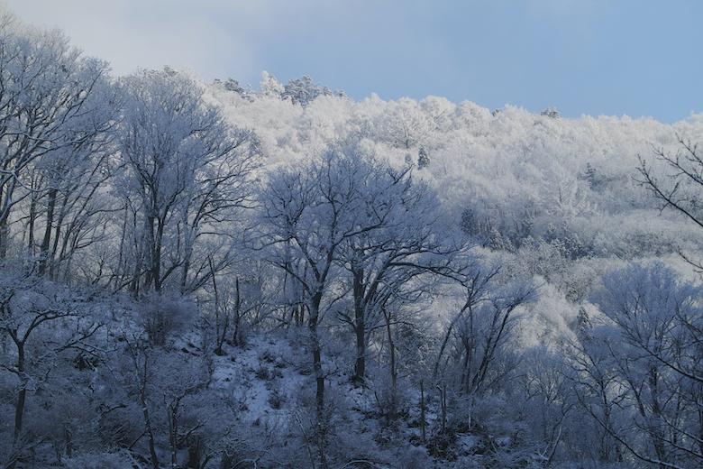 関西冬のオススメスポット