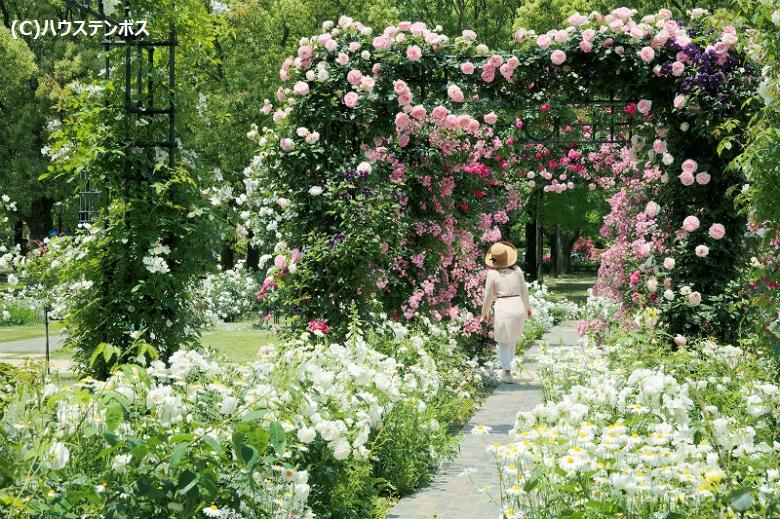 お花が咲き誇るテーマパーク「ハウステンボス」