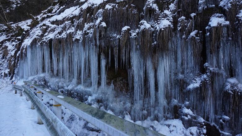 梨木の氷柱