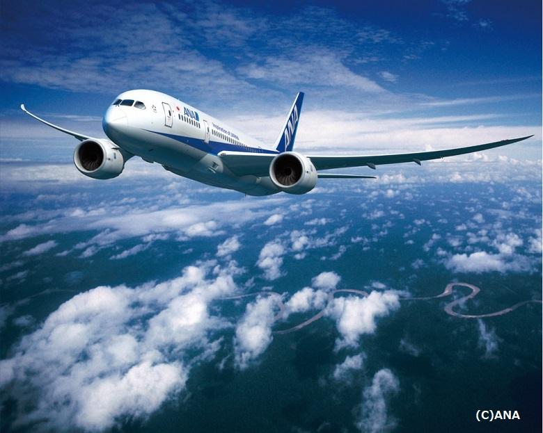 飛行機の団体割引のことならANAセールス!大人数の旅行や視察の手配に ...