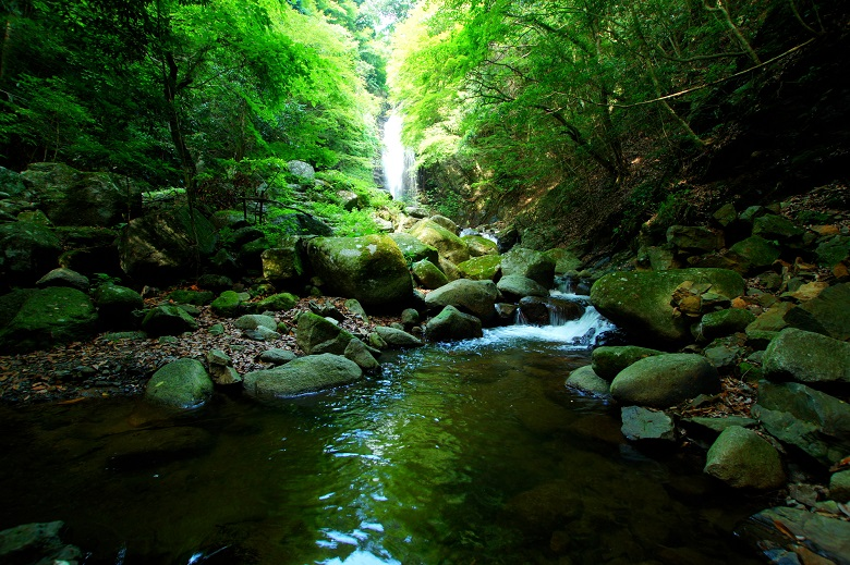 紅葉の名所「白藤の滝」