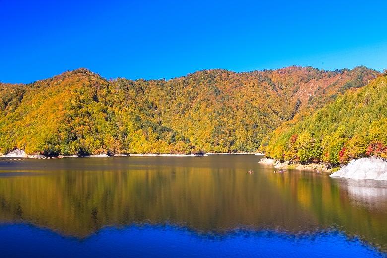 奈良俣ダムの紅葉