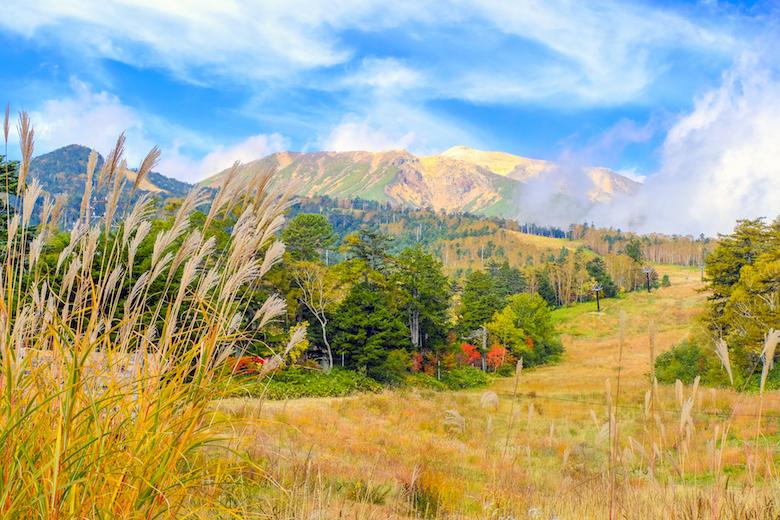 御岳山・乗鞍岳で紅葉を楽しむバスツアー