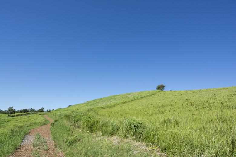 押戸石の丘とはどんな場所?