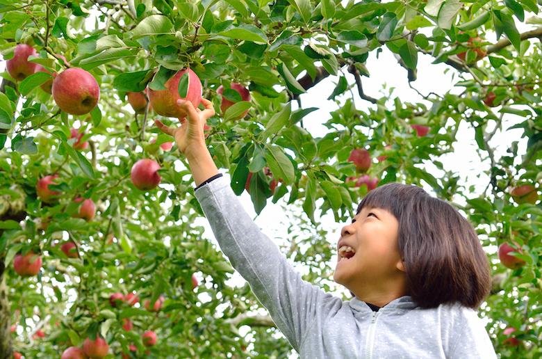 【大阪発】長野の自然を満喫する家族同伴バスツアー