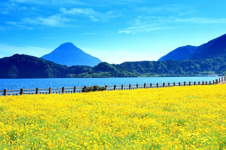 春の池田湖