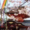 春の石清水八幡宮