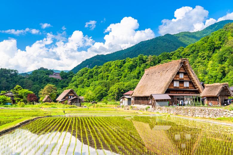 【長岡発】白川郷と飛騨の古い町並み周遊バスツアー