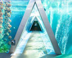 アクアマリンふくしまの三角トンネル